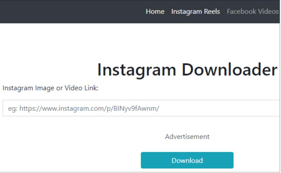 Freelancing - Instagram Downloader